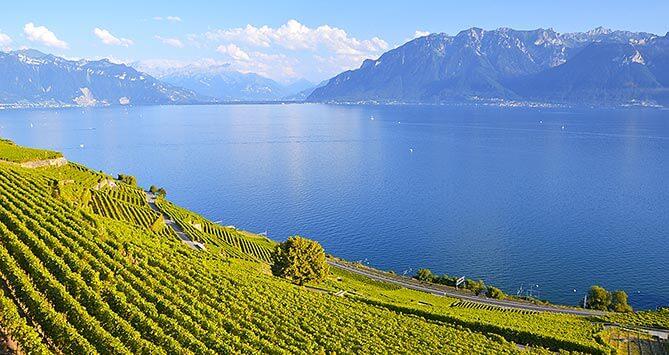 Agence de publicité dans le canton de Vaud (Suisse)