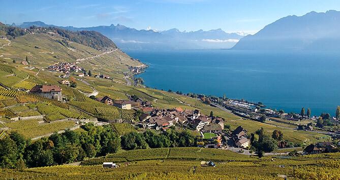 Agence de communication suisse, située au coeur du Lavaux (entre Lausanne et Vevey)