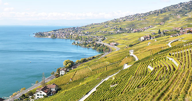 La Commune de Bourg-en-Lavaux dans le canton de Vaud.