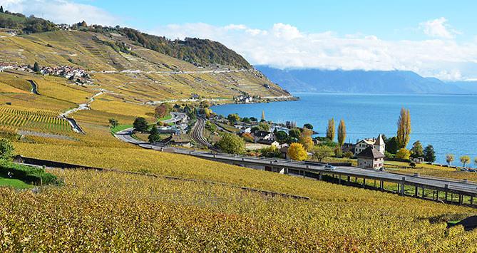 Lavaux inscrit au patrimoine mondial de l'UNESCO (Cully | Vaud)