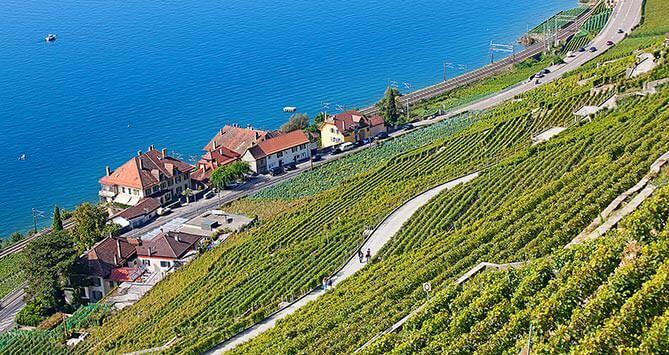 Dezaley, Bourg-en-Lavaux. Entre Vevey et Lausanne